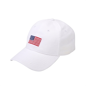H-L American Flagⓒ on White
